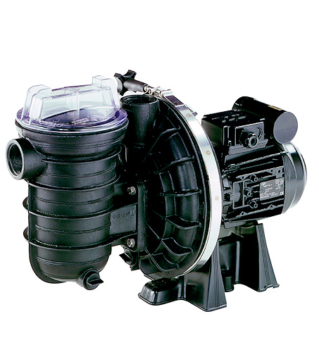 sta rite 5p2r swimming pool pump swimming pool pump